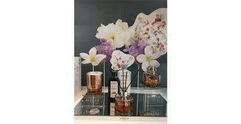 Découverte de la collection POESY et promotion sur le parfum du mois !